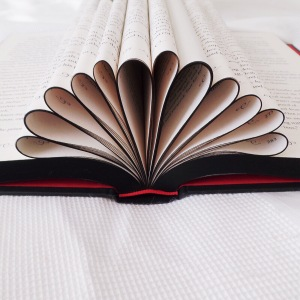book crown black edges
